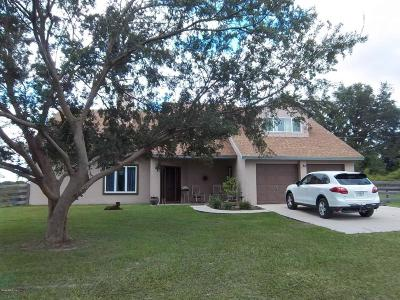 Dunnellon Single Family Home For Sale: 750 NW 217th Court