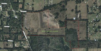 Ocala FL Residential Lots & Land For Sale: $750,000