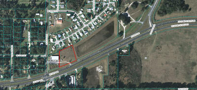 Belleview Residential Lots & Land For Sale: SE Highway 484