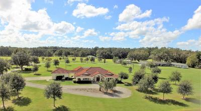 Belleview, Ocala, Ocala Fl Farm For Sale: 500 NE 95th Street