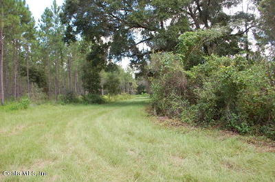Residential Lots & Land For Sale: County Road 1469