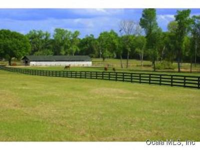Reddick FL Residential Lots & Land For Sale: $275,000
