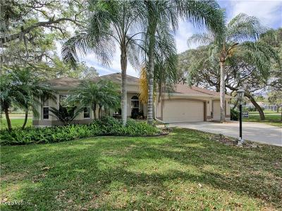 The Villages Single Family Home For Sale: 3280 Hampton Lane