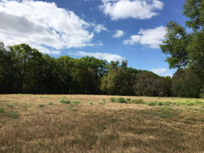 Residential Lots & Land For Sale: NE 200 Avenue