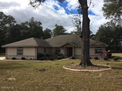 Summerfield Single Family Home For Sale: 17600 South Highway 475