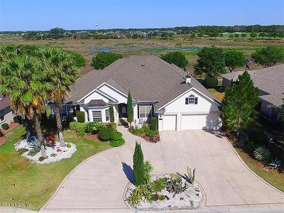 The Villages Single Family Home Sold: 1309 Harley Circle