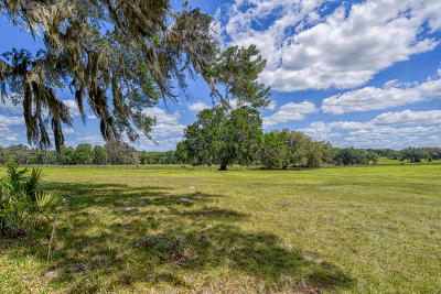 Micanopy Farm For Sale: 7459 NW 193rd Street