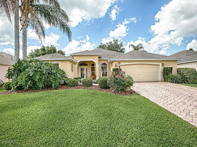 The Villages Single Family Home For Sale: 2436 Tamarindo Drive