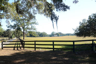 Ocala Farm For Sale: 8359 NE Jacksonville Road
