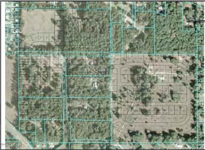 Belleview Residential Lots & Land For Sale: 6850 SE 110th Street