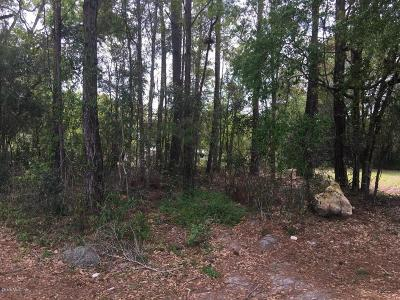 Residential Lots & Land Pending: Lot 6 SW 3rd Street