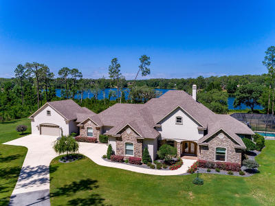 Ocklawaha FL Single Family Home For Sale: $749,000