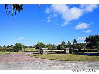 Ocala Residential Lots & Land For Sale: NW 115th Avenue