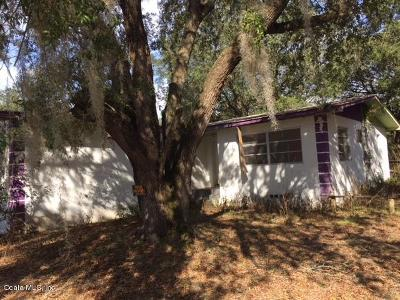 Ocklawaha Single Family Home For Sale: 14061 SE 117th Place