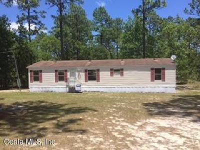 Dunnellon Single Family Home For Sale: 13815 SW 91st Place