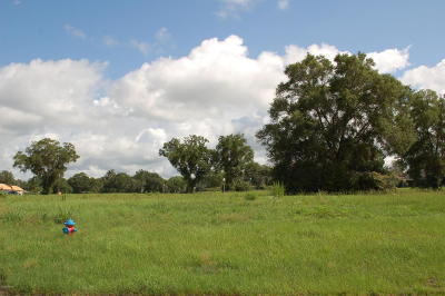 Ocala Residential Lots & Land For Sale: NW 42nd Place