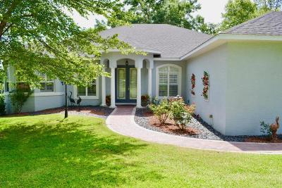 Dunnellon Single Family Home For Sale: 9021 SW 196th Terrace Road