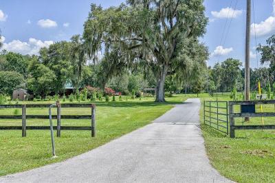 Reddick Farm For Sale: 9480 W Hwy 316