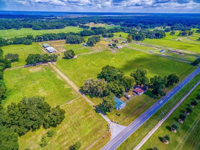Citra Farm For Sale: 3065 W Hwy 318