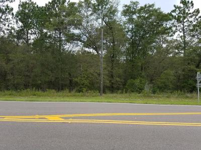 Residential Lots & Land Pending: Hwy 41
