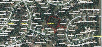 Ocala Residential Lots & Land For Sale: Tract C SW 109th Loop