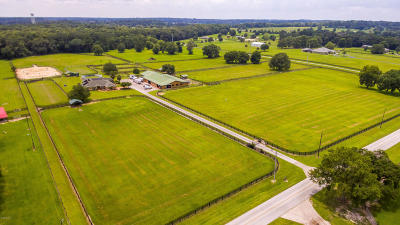 Marion County Farm For Sale: 4750 NW 120th Street