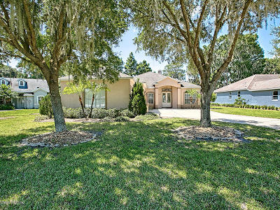Leesburg Single Family Home For Sale: 12120 Eagle Point Court