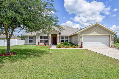 Ocala Single Family Home For Sale: 4869 SW 101st Lane