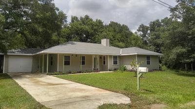 Dunnellon Single Family Home For Sale: 19127 Saint Benedict Drive
