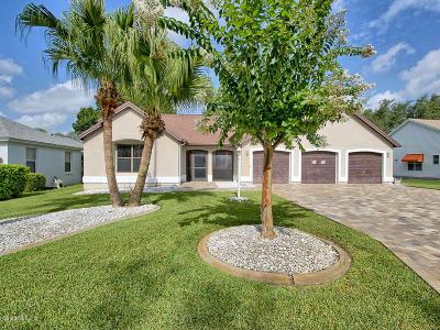 Lady Lake Single Family Home For Sale: 314 Chula Vista Avenue