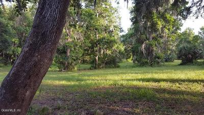 Ocala Residential Lots & Land For Sale: SE 21st Ave