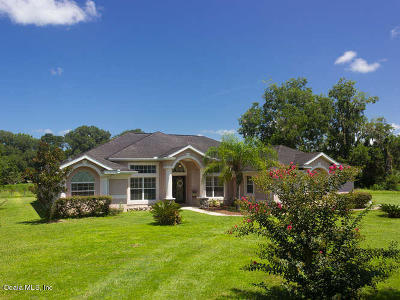Ocala Single Family Home For Sale: 3881 SE 73rd Street