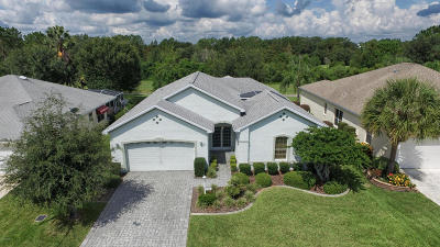 The Villages Single Family Home For Sale: 306 Carrera Drive