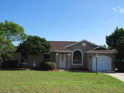 Ocala Single Family Home For Sale: 311 Oak Trak