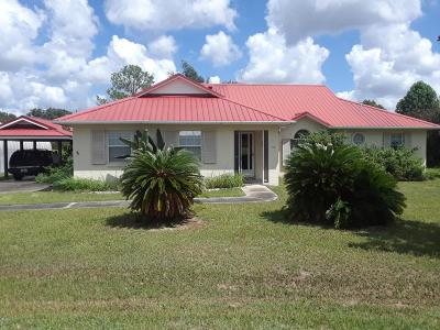 Ocala Single Family Home For Sale: 57 Banyan Drive