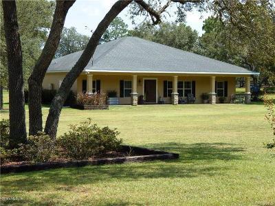 Dunnellon Single Family Home For Sale: 23625 NW Falcon Avenue