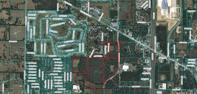 Ocala Residential Lots & Land For Sale: 1920 NW 44th Avenue