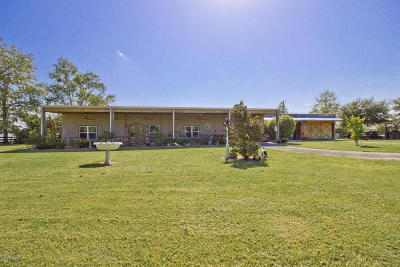 Belleview Single Family Home For Sale: 6053 SE 99th Place