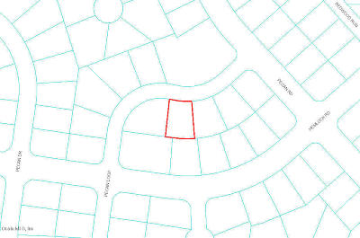 Residential Lots & Land For Sale: Pecan Loop