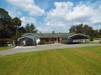 Ocklawaha Single Family Home For Sale: 9450 SE 183rd Avenue