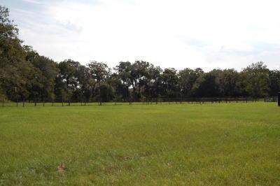 Citra Farm For Sale: 1233 NE 135th Place