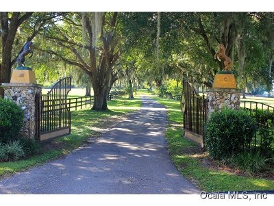 Belleview, Ocala, Ocala Fl Farm For Sale: 800 SW 85th Avenue