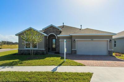 Ocala Single Family Home For Sale: 4676 NW 35th Lane Road