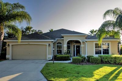 The Villages Single Family Home For Sale: 941 Caribou Way