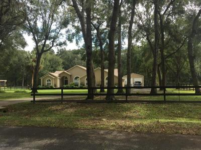 Ocala FL Single Family Home For Sale: $424,000