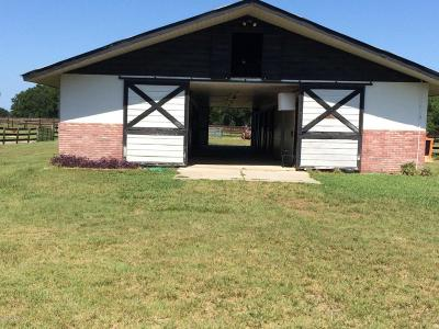 Ocala Rental For Rent: 10555 S.r. 40