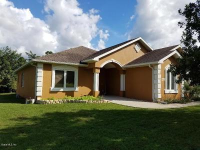 Ocala Single Family Home For Sale: 6571 S Magnolia Avenue