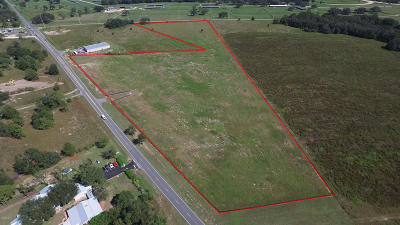 Ocala Residential Lots & Land For Sale: W Hwy 40