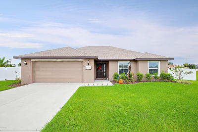 Ocala Single Family Home For Sale: 9961 SW 55th Avenue Road