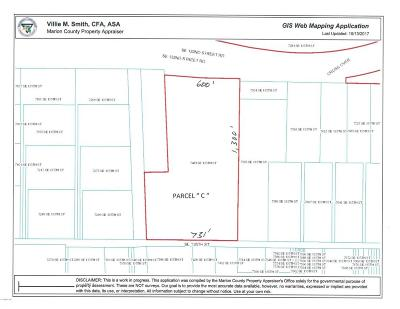 Belleview Residential Lots & Land For Sale: Parcel C SE 135th Street